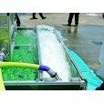 画像5: 水災害体験装置